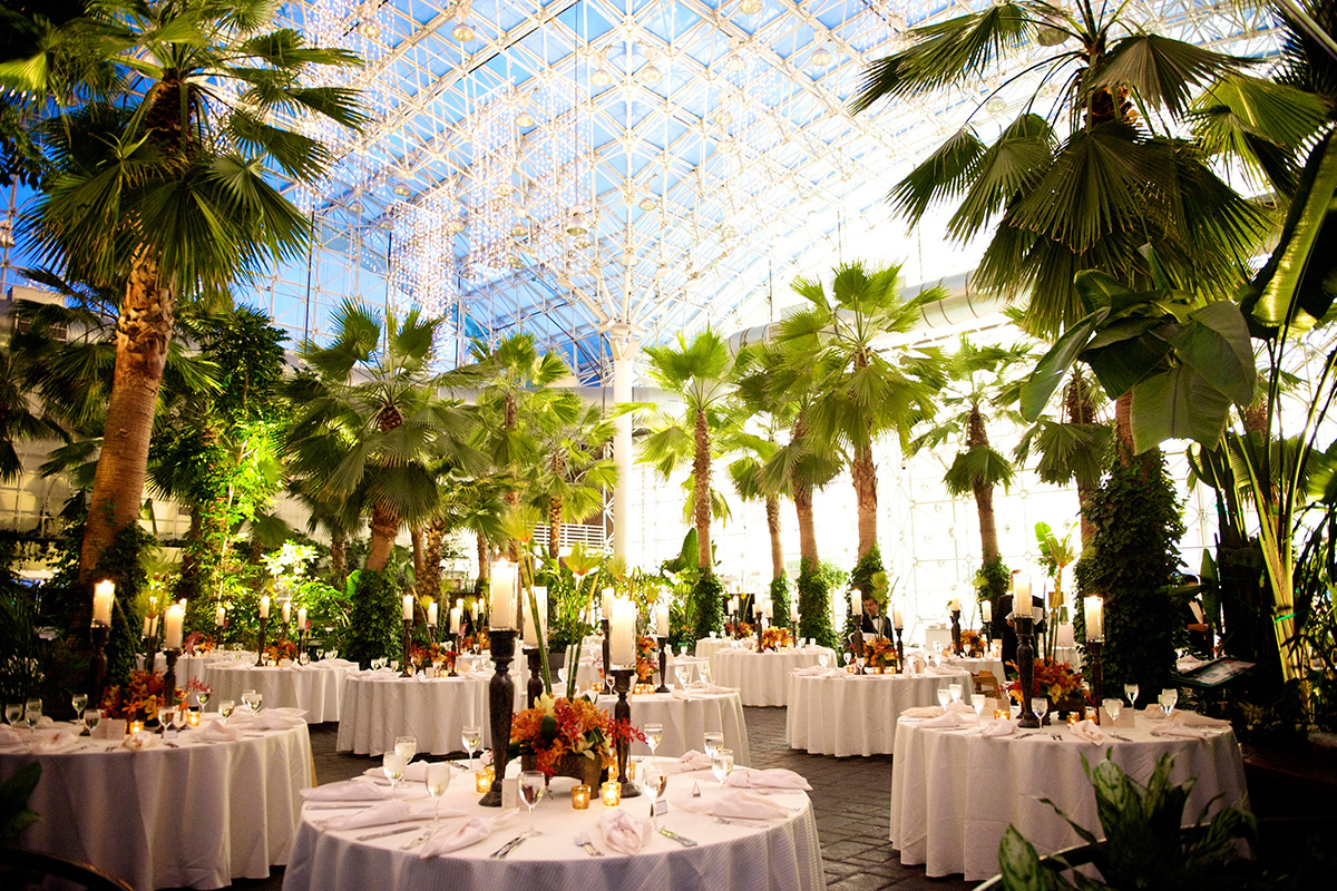 Crystal Gardens Private Events Navy Pier