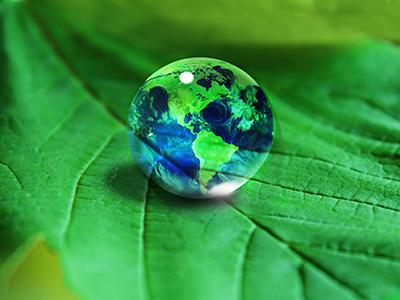 Green Partners