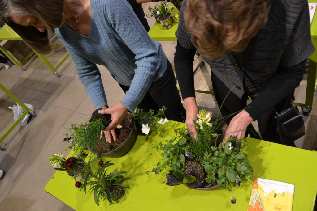 Chicago Flower & Garden Show: Blooming at Navy Pier