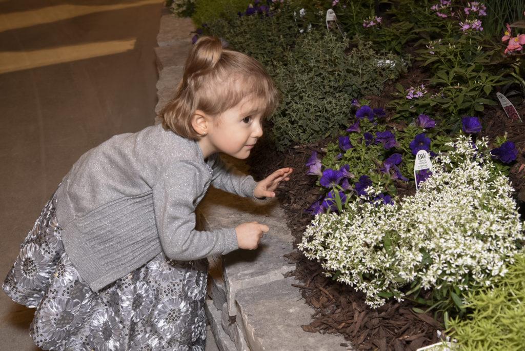 2015 Chicago Flower & Garden Show-Evening in Bloom