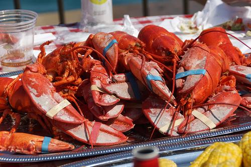 Great+American+Lobster+Fest+Navy+Pier+103