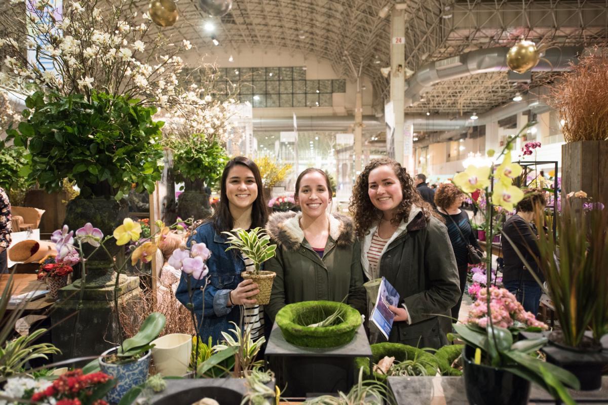 Chicago Flower Garden Show 2019 Flowertales Navy Pier