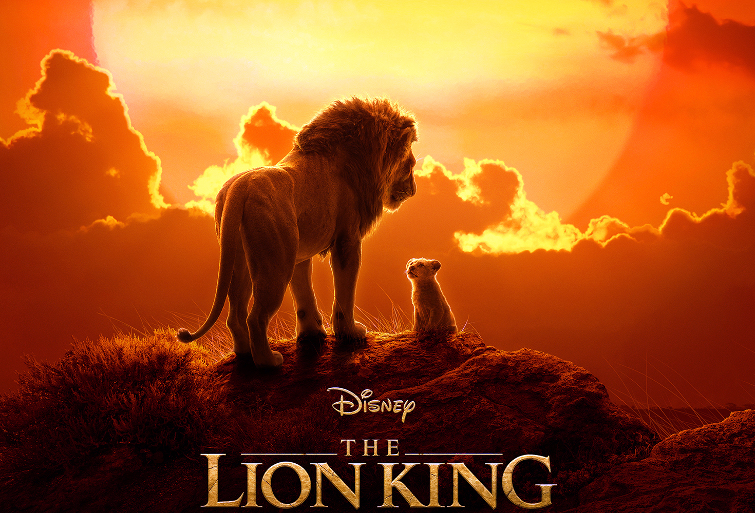 Water Flicks | The Lion King